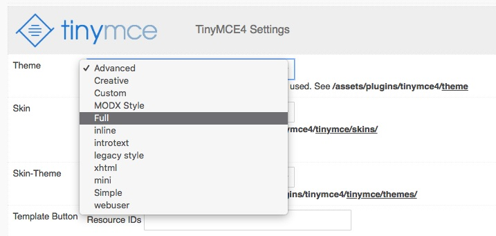 TinyMCE4 Theme Settings